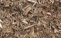 Playscape Mulch